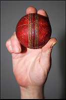 'Greatest' Test match ball for sale.