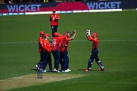 England's Saqib Mahmood celebrates his first T20 wicket. Twenty20 International cricket match between NZ Black Caps and England at Westpac Stadium in Wellington, New Zealand on Sunday, 3 November 2019. Photo: Dave Lintott / lintottphoto.co.nz