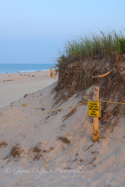 """""""Please keep off the dunes and grass"""" sign at beach."""