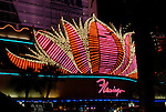 The Flamingo in Las Vegas