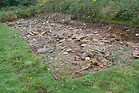 SAVEOCK WATER, CORNWALL, ENGLAND - AUGUST 03: A general view of the ruins of an extensive prehistoric building on August 3, 2008 in Saveock Water, Cornwall, England. Excavations here are led by archaeologist Jacqui Wood. Her team has not yet excavated this building. (Photo by Manuel Cohen)