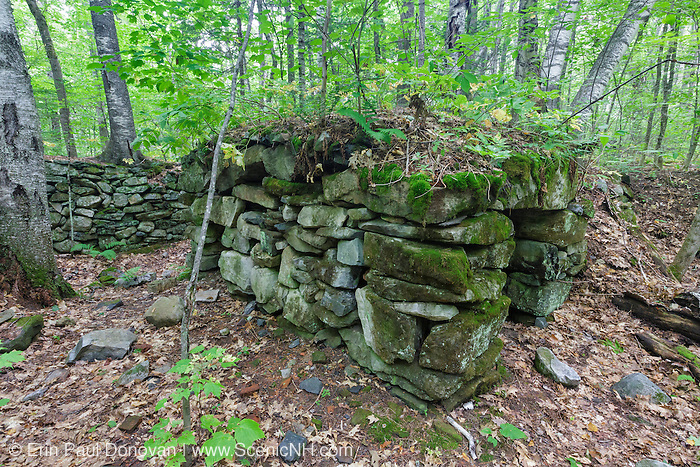 Abandoned cellar hole along an old dirt road, near Black Brook, in Warren, New Hampshire. Based on an 1860 historical map of Grafton County this was the homestead of S.T. Hayt. This is a side view of the split stone arch that supported the chimney structure. Consisting of two walls of stones topped with horizontal stones this type of chimney arch was used after the turn of the nineteenth century. And it has been documented that farmers used this area for winter food storage.