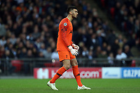 Paulo Gazzaniga of Tottenham Hotspur during Tottenham Hotspur vs PSV Eindhoven, UEFA Champions League Football at Wembley Stadium on 6th November 2018