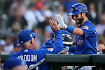 Chicago Cubs' Tommy La Stella is greeted in the dugout after hitting a home run in a spring training game Arizona Diamondbacks' Evan Marzilli in Scottsdale, Ariz., on Thursday, March 23, 2017.<br /> Photo by Cathleen Allison/Nevada Photo Source