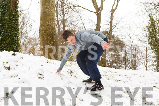 Zac O'Connor  from Tralee trying to perfect his snowboarding in the Town park on Friday morning last.