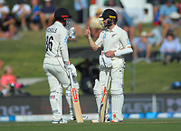 NZ's Henry Nicholls and Kane Williamson during day two of the international cricket 1st test match between NZ Black Caps and England at Bay Oval in Mount Maunganui, New Zealand on Friday, 22 November 2019. Photo: Dave Lintott / lintottphoto.co.nz