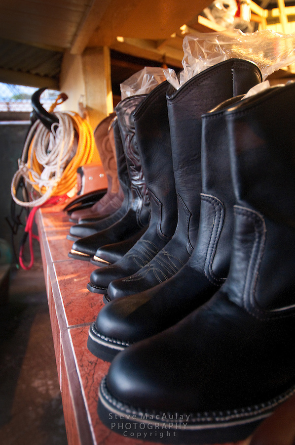 Handcrafted leather cowboy boots, Santa Elena, Costa Rica