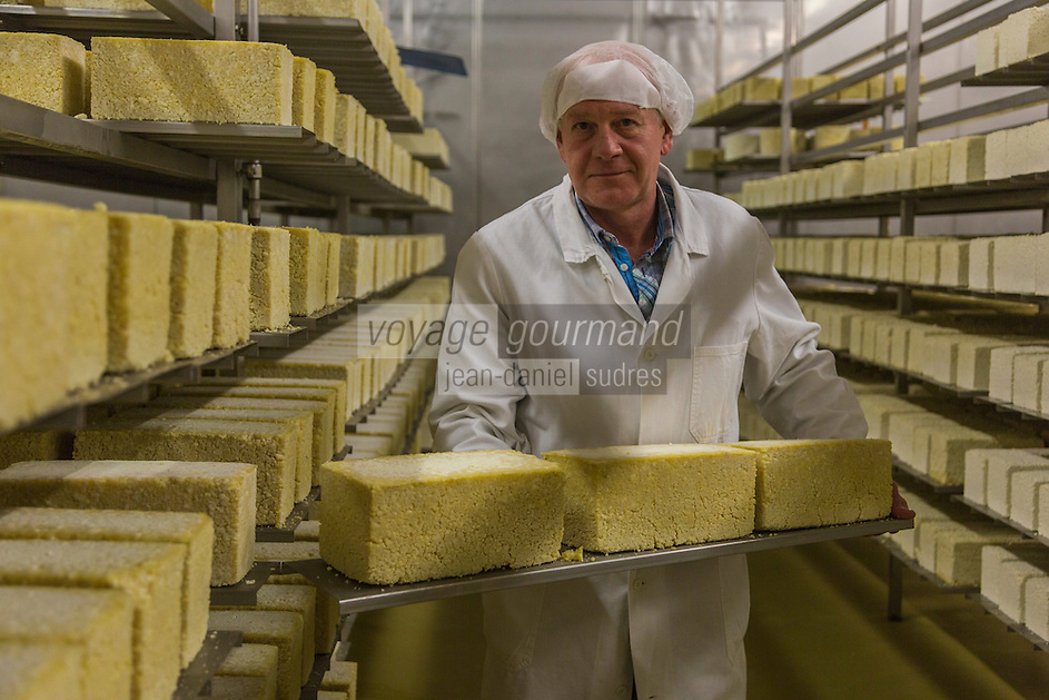 Europe, Autriche, Tyrol (Land), Tyrol du Nord, Weerberg: Fromagerie Lieb Thomas GmbH , Thomas Lieb surveille la maturation de ses fromages dans la  cave d'affinage -Fromage gris du Tyrol // Europe, Austria, Tyrol (state), Weerberg: Thomas Lieb in the ripening cellar - Tyrolean grey cheese<br /> Auto:N° 2014-177