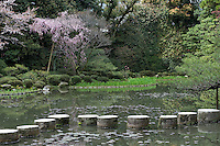 The gardens of the Heian Shrine (Heian Jingu), Kyoto, Japan in which a series of stepping stones cross an ornamental lake