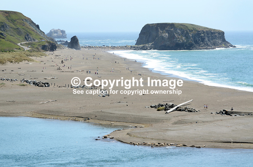 Coastline, Pacific Ocean, near Jenner, Sonoma County, California, USA, near where the Russian River enters the sea. Seals and their pups bask on a sandbank in the foreground.  201304292057<br /> <br /> Copyright Image from Victor Patterson, 54 Dorchester Park, Belfast, UK, BT9 6RJ<br /> <br /> Tel: +44 28 9066 1296<br /> Mob: +44 7802 353836<br /> Voicemail +44 20 8816 7153<br /> Skype: victorpattersonbelfast<br /> Email: victorpatterson@me.com<br /> Email: victorpatterson@ireland.com (back-up)<br /> <br /> IMPORTANT: If you wish to use this image or any other of my images please go to www.victorpatterson.com and click on the Terms &amp; Conditions. Then contact me by email or phone with the reference number(s) of the image(s) concerned.