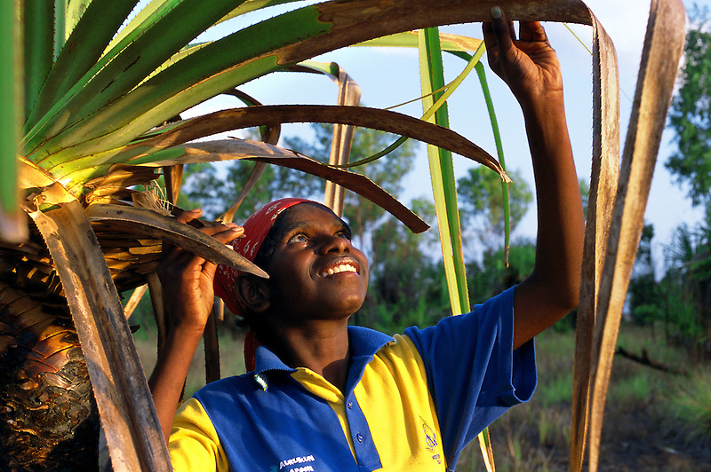 Zara Yarrak, Sara Clan group, collecting pandanus leaf, Aurukun, Cape York Peninsula.