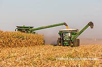 63801-08011 Corn Harvest John Deere combine Marion Co. IL