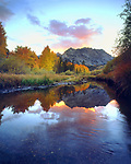 USA; California; Sierra Nevada Mountains.; Autumn colors reflecting in Bishop Creek at Sunset