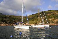 - Corsica, yachts moored in the Girolata Bay, UNESCO Human Heritage site<br /> <br /> - Corsica, yachts ormeggiati nella baia di Girolata, patrimonio mondiale dell'Umanit&agrave;