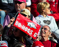 Mississippi State Bulldogs vs Arkansas Razorback -  at Donald W. Reynolds Stadium, Fayetteville, on Saturday, November 2, 2019 / Special to NWA Democrat Gazette David Beach