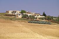 Tunisia, near Testour.  Farm.