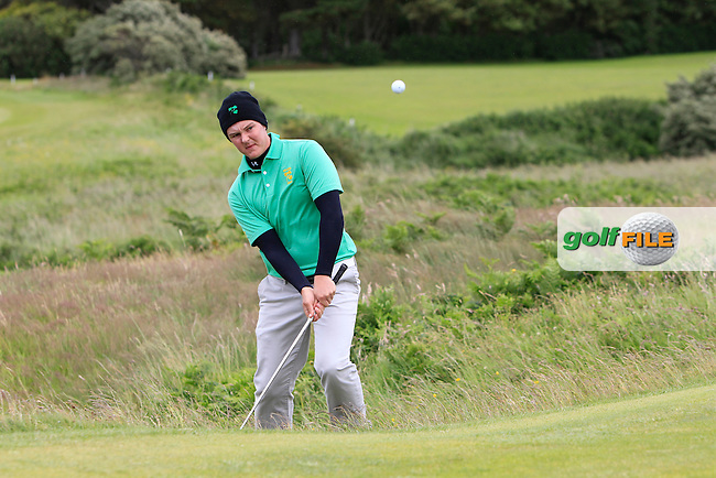 John-Ross Galbraith (Whitehead) on the 3rd during the Final round of the North of Ireland Amateur Open Championship at Royal Portrush, Dunluce Course on Friday 17th July 2015.<br /> Picture:  Golffile | Thos Caffrey