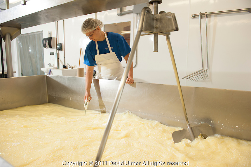 The Marcoot daughters (seventh generation) run their own cheese making company on the grounds of the family Jersey dairy in Bond County, Illinois