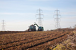 Farm machinery harvesting sugar beet by electricity pylons at Sizewell, Leiston, Suffolk, England