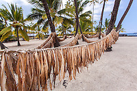 Ti (ki) leaves hanging on hukilau rope in Pu'uhonua (Place of Refuge) o Honaunau National Historical Park, Big Island.
