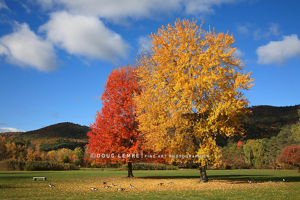 Battlefield Park, Lake George, Adirondack Mountains, New York