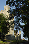 Looking up through trees at Rochester Castle