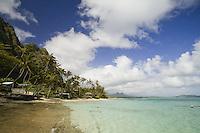 Houses and palm trees on Waimanalo Beach, on the windward coast of Oahu