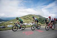 Green Jersey Peter Sagan (SVK/Bora-Hansgrohe) descending the Horquette d'Ancizan<br /> <br /> Stage 12: Toulouse to Bagnères-de-Bigorre(209km)<br /> 106th Tour de France 2019 (2.UWT)<br /> <br /> ©kramon