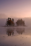 A small island in a colorful dawn fog at Petersham's Harvard Pond.