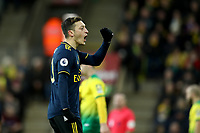 1st December 2019; Carrow Road, Norwich, Norfolk, England, English Premier League Football, Norwich versus Arsenal; Mesut Ozil of Arsenal celebrates the goal by Pierre-Emerick Aubameyang for 2-2 - Strictly Editorial Use Only. No use with unauthorized audio, video, data, fixture lists, club/league logos or 'live' services. Online in-match use limited to 120 images, no video emulation. No use in betting, games or single club/league/player publications