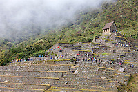 Peru, Machu Picchu.  Goardhouse and Early Morning First Tourist Arrivals.