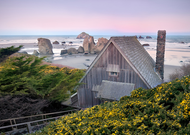 Cabin with ocean at Bandon and blooming gorse. Oregon