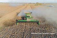 63801-13611 Harvesting soybeans in fall-aerial  Marion Co. IL