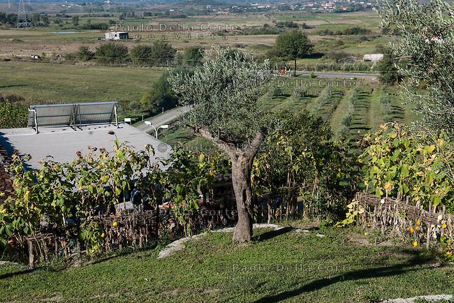 Fishtë (Albania) - Ristorante Mrizi i Zanave. Altin produce lui stesso verdura e frutta a KM 0. I campi nella tenuta del ristorante.