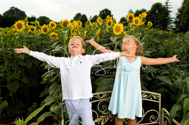 On-location photography of Charlotte's annual Field of Dreams event, during which Charlotte-area professional photographers donate their time creating images of cancer survivors. The sunflower field is located on farm land in Weddington, NC. Photographer Julie Staley of  Old South Studio's coordinates the event.<br /> <br /> Photo by: PatrickSchneiderPhoto.com