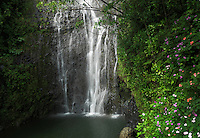 Wailua falls on the tropical island of Maui in Hawaii