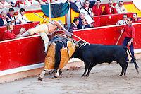 Toros-Feria San Fermin 2014