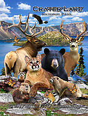Howard, REALISTIC ANIMALS, REALISTISCHE TIERE, ANIMALES REALISTICOS, paintings+++++,GBHRPROV135V,#a#, EVERYDAY ,National Parks ,puzzles