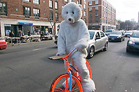 New York, NY - 15 March 2008 - Cyclist dressed in a Polar Bear costume to symbolize the fragility of live on this planet, rides a repurposed DKNY advertising bike.