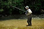 Trout fisherman in Penns Creek.