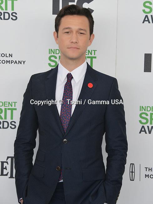 Joseph Gordon-Levitt 055 at the Film Independent Spirit Awards 2014on the Santa Monica Beach In Los Angeles.