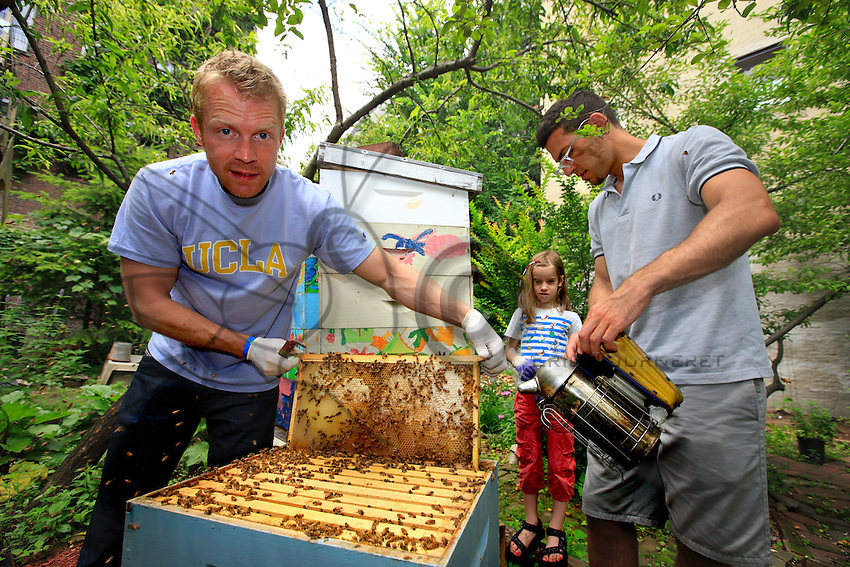 """In the community gardens, the associations carry out a true work of introduction to nature. """"I love sharing, that's part of neighborhood life. The gardens humanize the city, like the bees pollinate the flowers and vegetables."""" Adam Johnson, 35 years old, associate lawyer in a New York law firm, looks after four hives in a neighboring community garden."""
