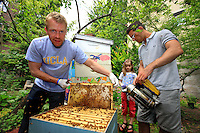 "In the community gardens, the associations carry out a true work of introduction to nature. ""I love sharing, that's part of neighborhood life. The gardens humanize the city, like the bees pollinate the flowers and vegetables."" Adam Johnson, 35 years old, associate lawyer in a New York law firm, looks after four hives in a neighboring community garden."