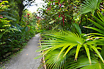 Guests on board the Sea Cloud visit the Diamond Botanical Gardens on the island of St. Lucia, Caribbean, Sea Cloud, travel