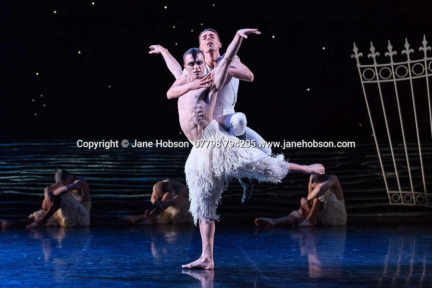 "London, UK. 07.12.2018. Matthew Bourne's ""Swan Lake"" returns to Sadler's Wells Theatre, for a run until Sunday 27th January 2019. Choreographed by Matthew Bourne, with lighting design by Paule Constable and costume design by Lez Brotherston. Dancer are: Matthew Ball (The Swan), Liam Mower (The Prince), Nicole Kabera (The Queen), Katrina Lyndon (The Girlfriend), Glenn Graham (The Private Secretary), Megan Cameron (The Hungarian Princess), Freya Field (The German Princess), Zanna Cornelis (The Romanian Princess), Nicole Alphonse, Jonathan Luke Baker, Tom Broderick, Kayla Collymore, Keenan Flethcer, Bryony Harrison, Parsifal James Hurst, Jack Mitchell, Harry Ondak-Wright, Ashley-Jordan Packer, Jack William Parry, Stan West, Carrie Willis. Picture shows: Matthew Ball (The Swan), Liam Mower (The Prince). Photograph © Jane Hobson."
