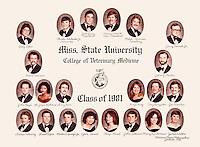 DVM Alumni Composites