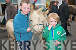 April Fair In Listowel: Cousins Eamonn Carmody, Newcasllewest and Edmond Finnucane, Duagh attending the fair in Listowel on Thursday last.