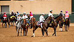 AUG 11: Horses go to post at The Del Mar Thoroughbred Club in Del Mar, California on August 11, 2019. Evers/Eclipse Sportswire/CSM
