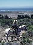 ranger on horse patrol at Ano Nuevo State Park