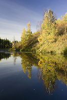 Fall morning at a beaver pond